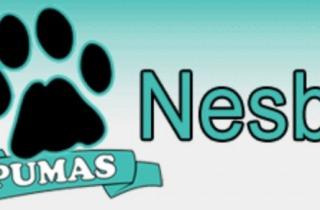 Nesbit Elementary School